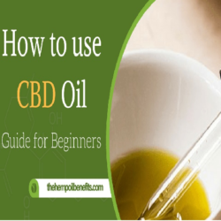 Several Ways To Take Hemp Oil