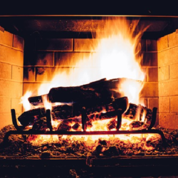 The Benefits of HavingFireplace Screens With Doors